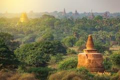 Dużo świątynie Bagan w Myanmar Fotografia Royalty Free
