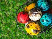 Dużo kolorowi Easter jajka są w koszu Kosz Wielkanocni jajka umieszczający na zielonej trawie Wielkanocny dnia pojęcie Obrazy Royalty Free