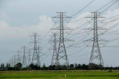 Dużo wzrosta woltażu elektryczności słupa stojaki w długiej linii na zielonych ryż polach fotografia royalty free