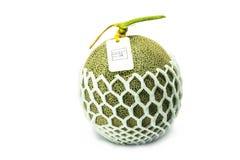 Duży świeży melon na białym tle Zdjęcia Stock