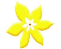 duży żółty kwiat Tło wally Zdjęcia Royalty Free