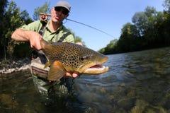 Duży brown pstrąg w rękach rybak Zdjęcie Royalty Free