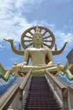Duży Buddha na piętrze obraz royalty free
