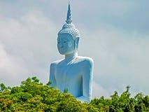 Duży Buddha przy Don Sak okręgiem Obraz Stock