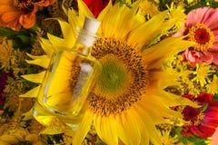 Duży bukiet z słonecznikową i małą butelką z olejem Fotografia Stock