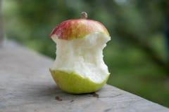 Duży czerwieni i zieleni jabłko był kąskiem Zdjęcia Royalty Free