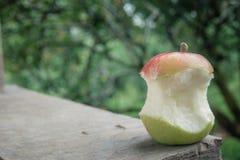 Duży czerwieni i zieleni jabłko był kąskiem Zdjęcia Stock