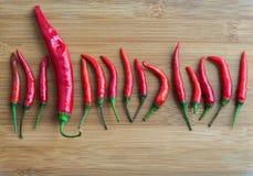 Duży Czerwony chili pieprz w małym Czerwony chili pieprzu na ciapanie bloku Obrazy Stock