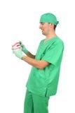 duży dentysty modela reprodukcja pokazywać Teet Obrazy Royalty Free