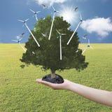 Duży drzewo r w ręce i silnika wiatrowego na świetnej pogodzie Fotografia Stock