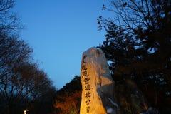 Duży Dziki Gęsi pagody XI. ` obraz stock