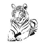 Duży dziki kot ilustracji