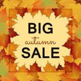 Duży jesieni sprzedaży projekt Fotografia Stock