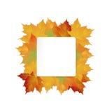 Duży jesieni sprzedaży projekt Zdjęcia Stock