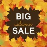 Duży jesieni sprzedaży projekt Obrazy Stock