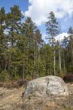 duży kamień Zdjęcia Stock