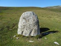 duży kamień Zdjęcia Royalty Free