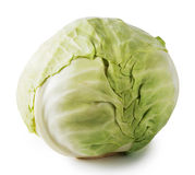 duży kapusty zieleni głowy warzywa Fotografia Stock