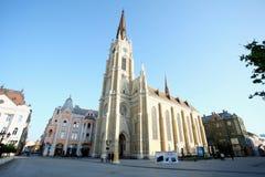 Duży katedralny Katolicka Porta strona duży katedralny Ka Zdjęcie Royalty Free