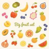 Duży kolorowy lato ustawiający owoc w wektorze Zdjęcia Royalty Free