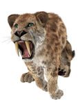 Duży kot Smilodon ilustracji