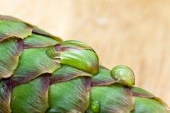 duży krople leaf woda Fotografia Royalty Free