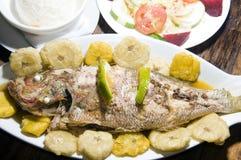 duży kukurudzy ryba wyspy Nicaragua ryżowi sałatkowi tostones Obrazy Royalty Free