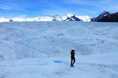 Duży Lodowy Wycieczkuje turysta, Perito Moreno lodowiec Santa Cruz Argentyna obrazy stock