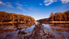 Duży naturalny lasowy jezioro na pogodnym lata midday z głębokim niebieskim niebem, wciąż nawadnia powierzchnię, natury panoramy  Zdjęcia Stock