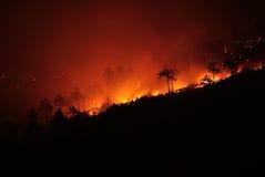 duży ogień Fotografia Royalty Free
