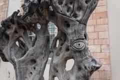 Duży oko rzeźbiący na starej drzewnego bagażnika drzewa oliwnego oka antycznej powiece fotografia stock