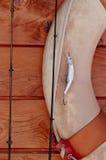 duży połowu kądziołka pomyślny sprzęt Obraz Royalty Free