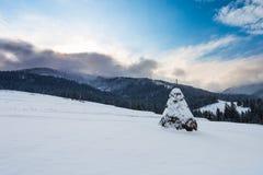 Duży przeprowadza żniwa na wzgórzu przy zimą na halnym tle Fotografia Stock