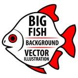 Duży Rybi tło Obrazy Stock