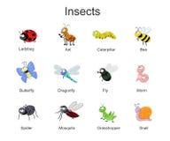 Duży set z ślicznymi kreskówka insektami Wektorowa insekt ilustracja ja Zdjęcia Stock