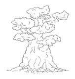 duży stary drzewo Obrazy Stock