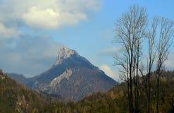 Duży szczyt w Alps Fotografia Stock