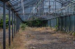 Duży zaniechany ogrodnictwo zdjęcia stock
