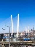 Duży zawieszenie most zdjęcie royalty free