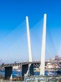 Duży zawieszenie most fotografia stock