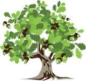 duży zielony dębowy drzewo royalty ilustracja