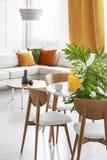Duży zielony liść w szklanej wazie na drewnianym stole w kolorowym żywym pokoju elegancki mieszkanie fotografia stock