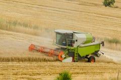 Duży zielony syndykata żniwiarza maszynowy działanie w pszenicznym złota polu, sąsiek trawa w lata polu Rolna maszyneria zbiera a zdjęcia stock