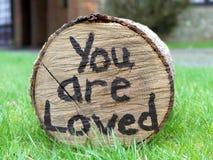 Du är älskat skriftligt på sida av grönt gräs för inloggningen royaltyfri bild