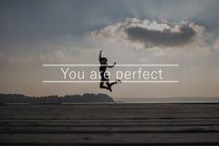 Du är det perfekta tecknet arkivfoto