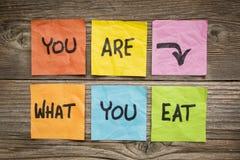 Du är vad som äter begrepp arkivbilder