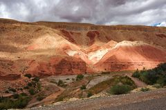Du beau roses DES de Rose Valley - de Vallee, pr?s d'Ouarzazate, le Maroc image libre de droits