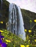 Du behöver se denna vattenfall om dig ` som är beträffande i Island royaltyfria foton