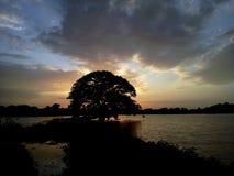 Du crépuscule Till Dawn II photo libre de droits