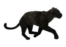 Dużego kota Czarna pantera Obraz Royalty Free
